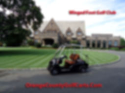 Luxury custom golf carts Diane