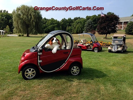 dog in golf cart Luxury custom golf carts Diane