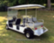 BRUTE  Golf Cart Wheelchair Trans  Vehicles The BRUTE WC