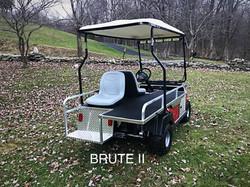BRUTE II EMT Golf Cart