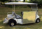 Golf Cart Wheelchair Trans  Vehicles The BRUTE WC