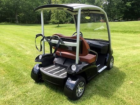 Luxury Diane Garia Golf Cart