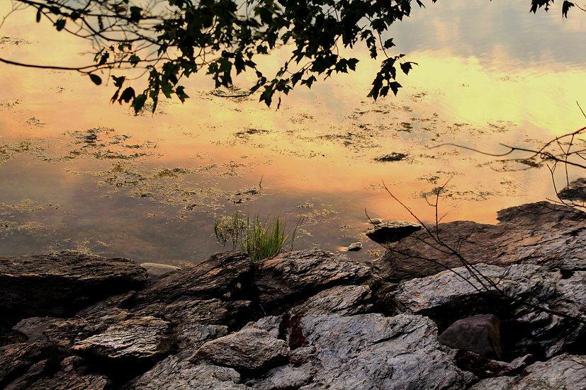 Frenchman Bay Sunset  (bb5)