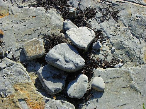 Beach Stones (rc5)