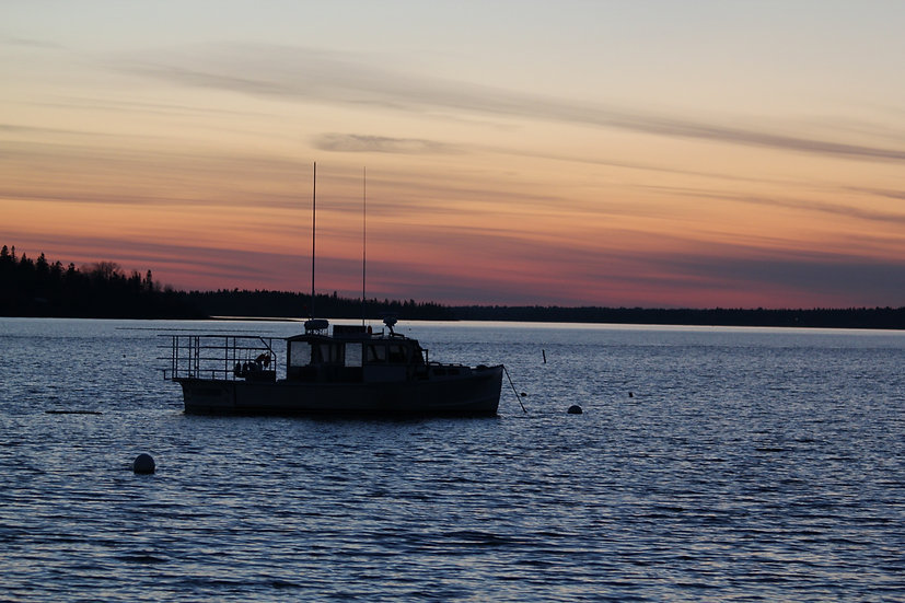 Frenchman Bay Lobster Boat in Sunset (bb6)