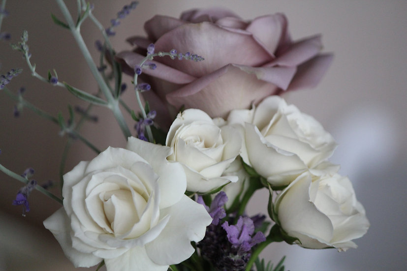 Roses (fl5)
