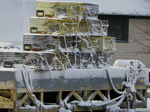 Snowy Lobster Traps (win8)