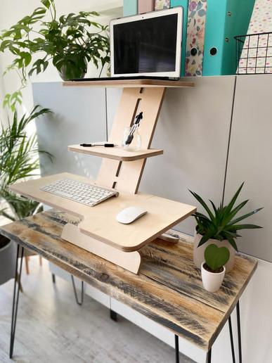 Well WorkStation Standing Desk Whole 2.J