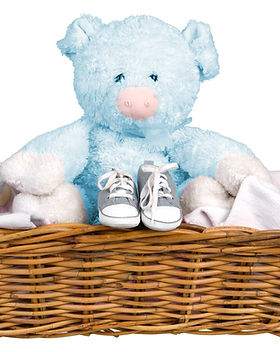 Blue Teddy in a Basket