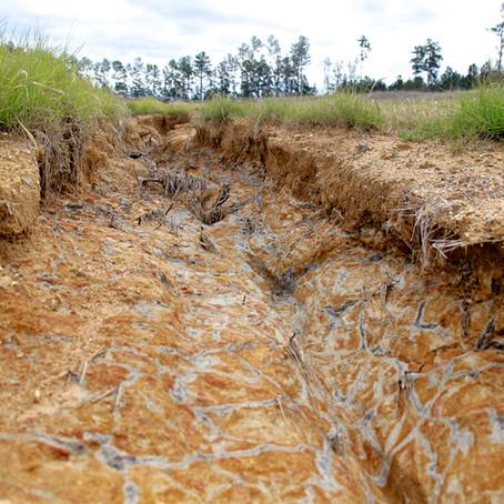 Chile: Iberoamérica se reúne para promover una ley que proteja los suelos