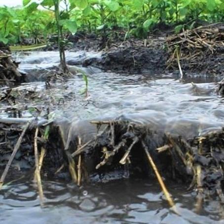 Argentina: El 26 % del territorio se encuentra afectado por erosión hídrica