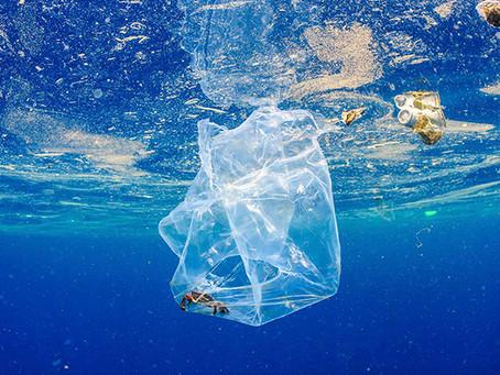 Los seres humanos estarían consumiendo el plástico equivalente a una tarjeta de crédito por semana
