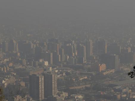 """Día Mundial del Medio Ambiente La ONU pide actuar con """"contundencia"""" contra la contaminaci"""