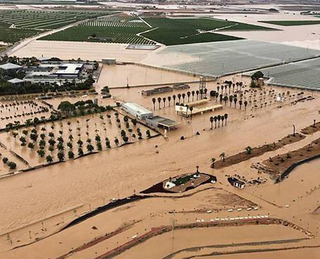 Alicante: Proponen planificar el territorio del Río  Segura para minimizar inundaciones