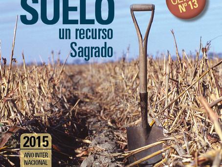 Ya está disponible ON LINE la nueva edición de Revista CEIBE