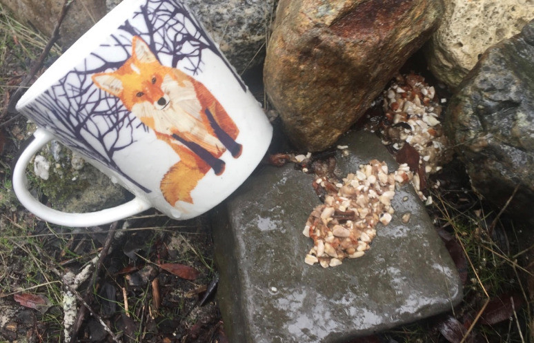 Fox scat and a cup with a red fox on it