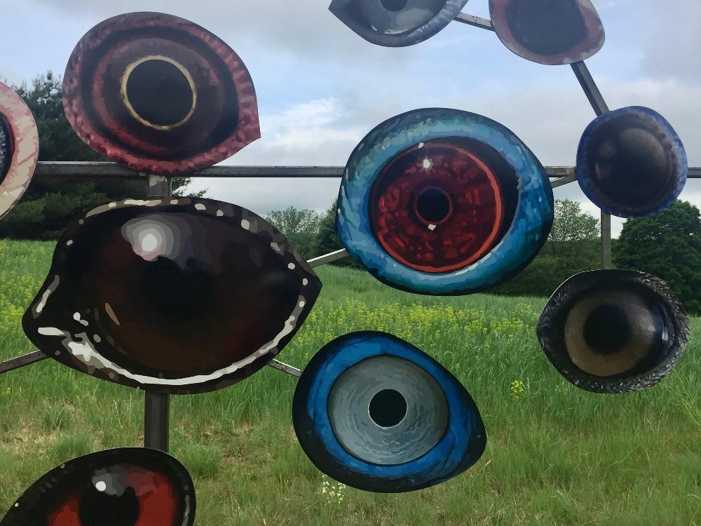 Eyes of endangered birds at Storm King Sculpture Garden Jenny Kindler