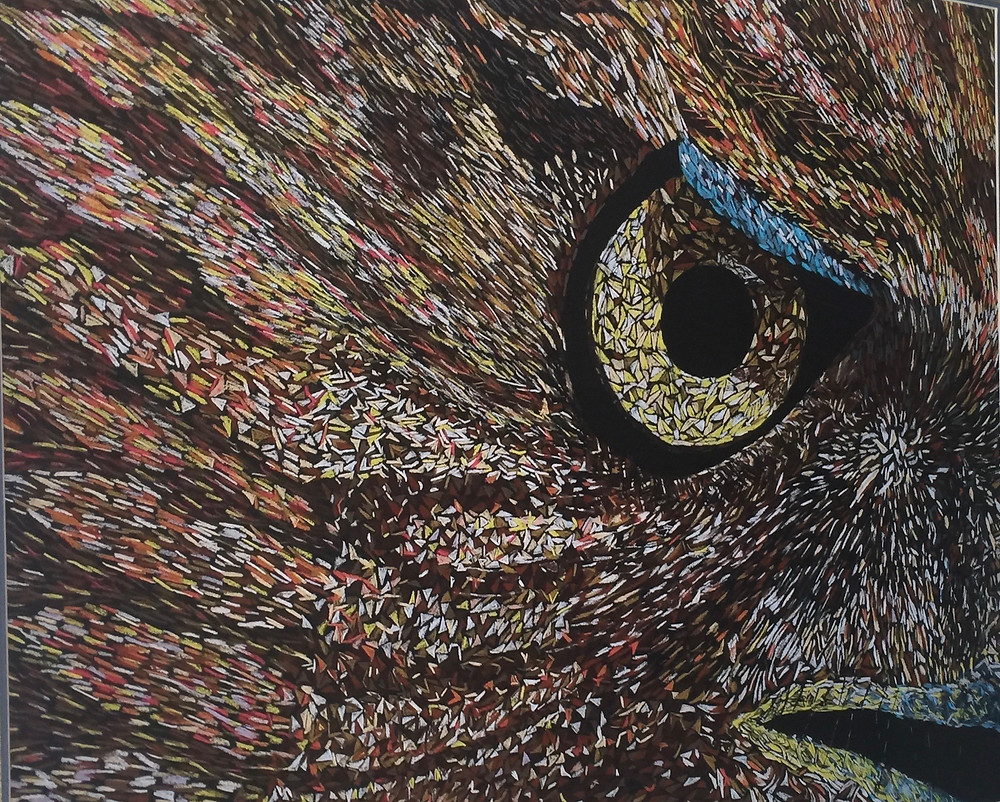 """Close up hawk eye painting by Ron DuHamel"""