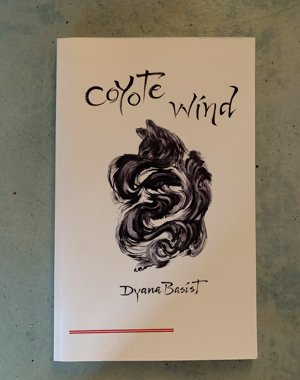 """""""Coyote Wind poetry book cover by Dyana Basist"""""""
