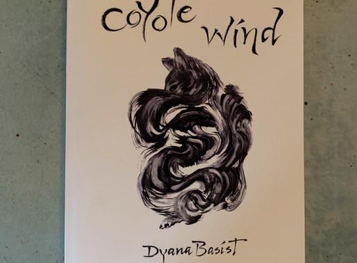Wayfinder Review: Coyote Wind