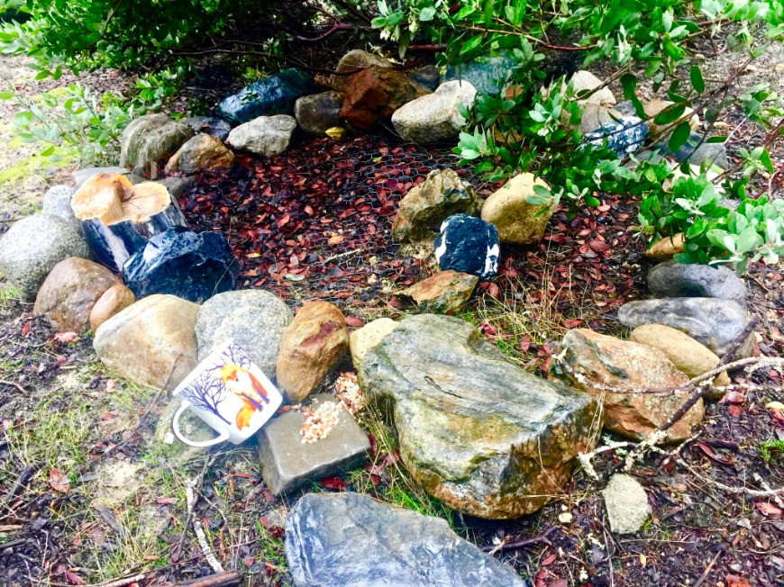 Stones around gravesite of my dog with a cup featuring a red fox