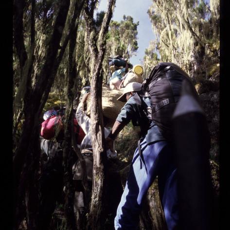 Aufstieg über die Umbwe Route