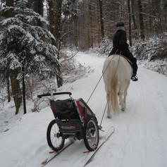 Winterausritt mit Schlitten