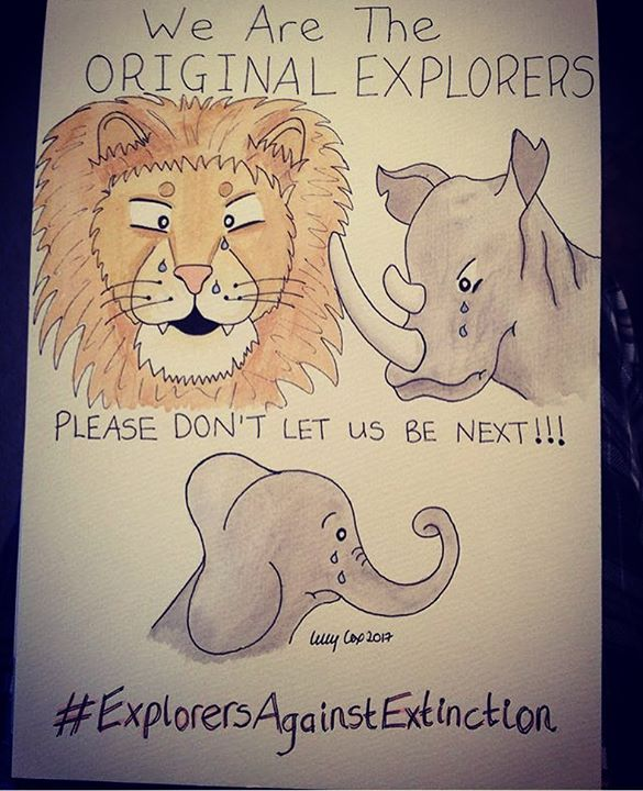 There is still time to bid on my artwork in the #ExplorersAgainstExtinction #sketchforsurvival aucti