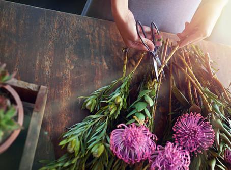5 Secretos para conservar tus flores frescas por mas tiempo