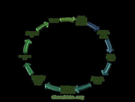 Konektis theory on Zoom fatigue - a vicious circle