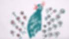 3-Petit Piment - paon roucoule.png