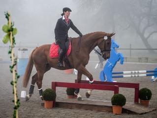 Working Equitation und Spring-&Geländeübungen