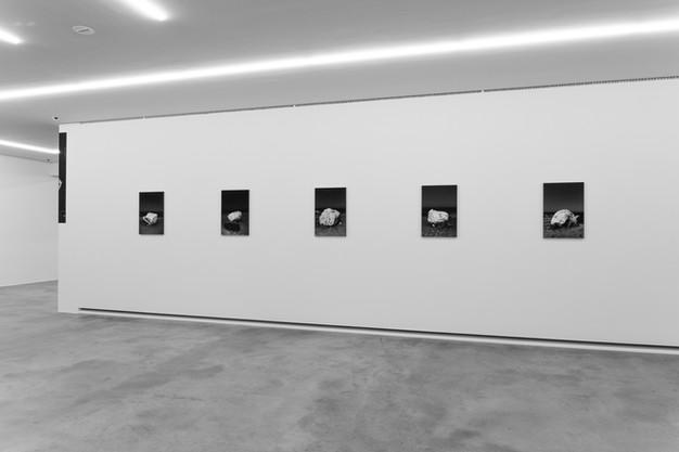 Kristina Lenz_Ausstellungen._01-4.jpg