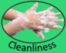 Cleanliness Icon.png