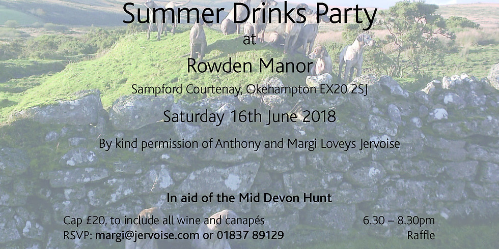 Summer Drinks Party