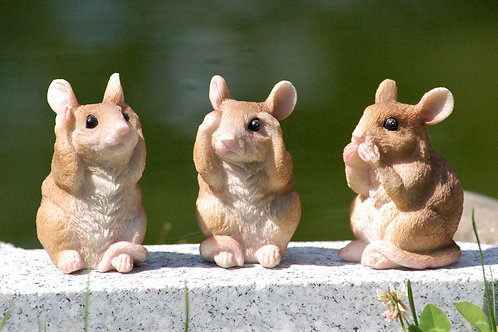 Three Wise Mice