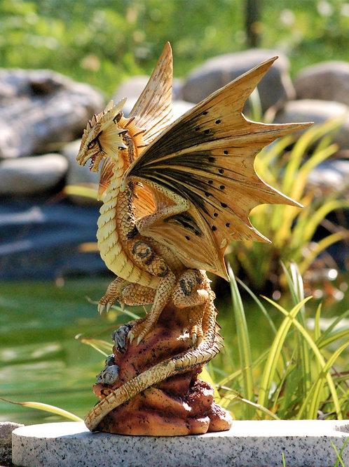Desert Dragon (adulte)