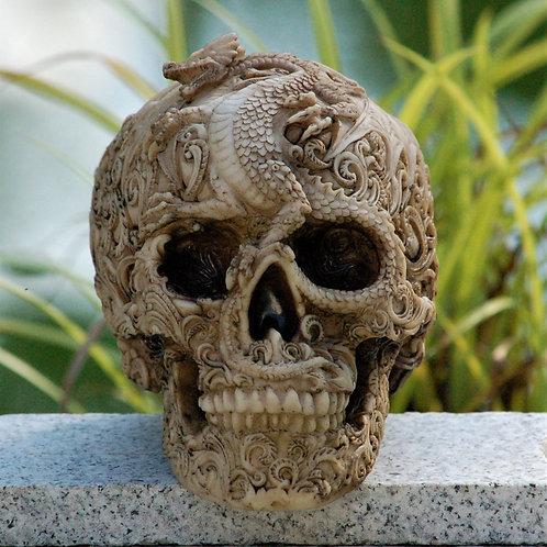 Cranial Dracos