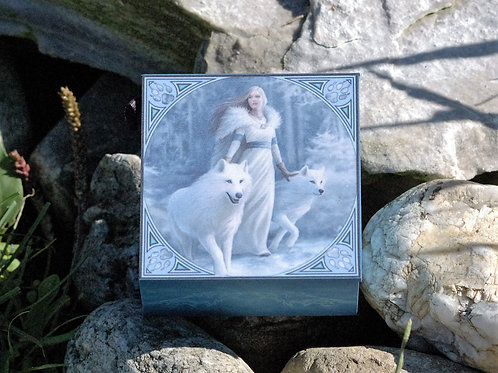 Boîte avec miroir, Winter Guardians