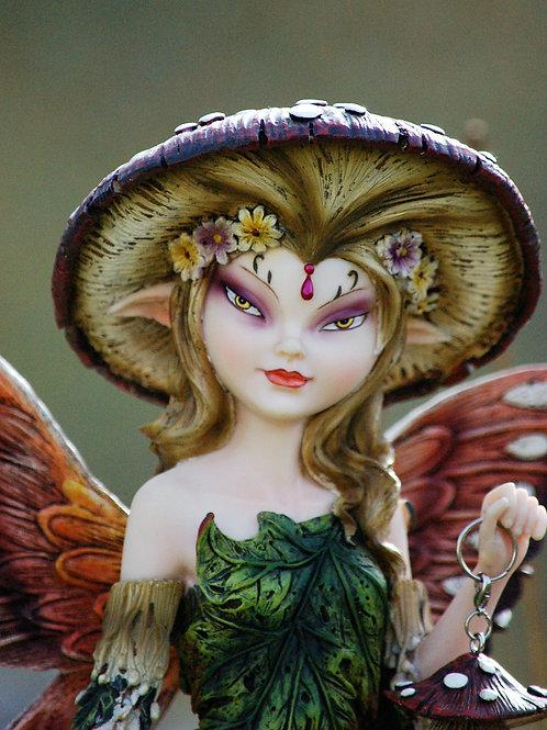 Pixie de la forêt Nelsy