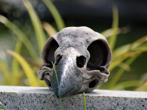 Edgar's Raven Skull