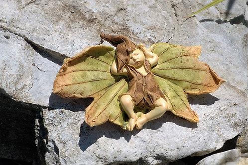 Bébé Fairy