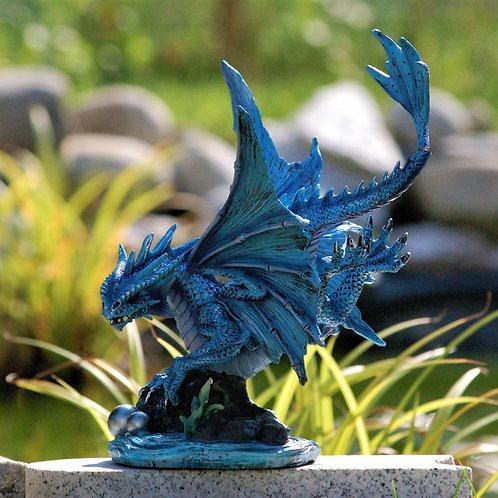 Water Dragon (adulte)