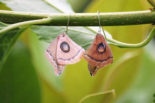 Boucles oreilles ailes de papillon
