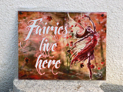 """Plaque métal """"Fairies live here"""""""