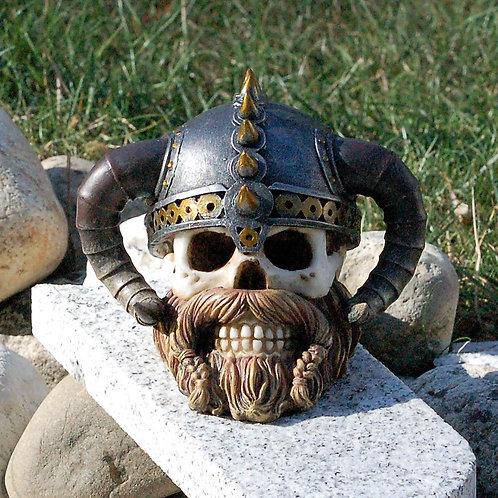Crâne Erik