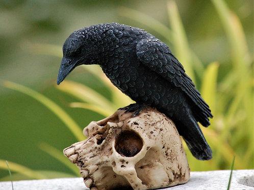 Raven's Remains