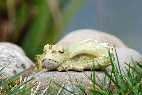 Bébé dragon endormi