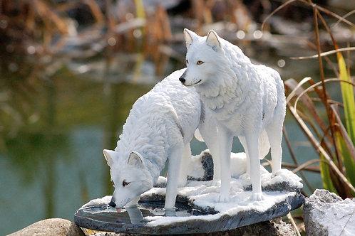 Warriors of the Winter