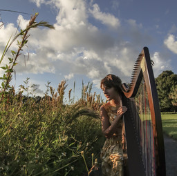 Harp by the Reeds